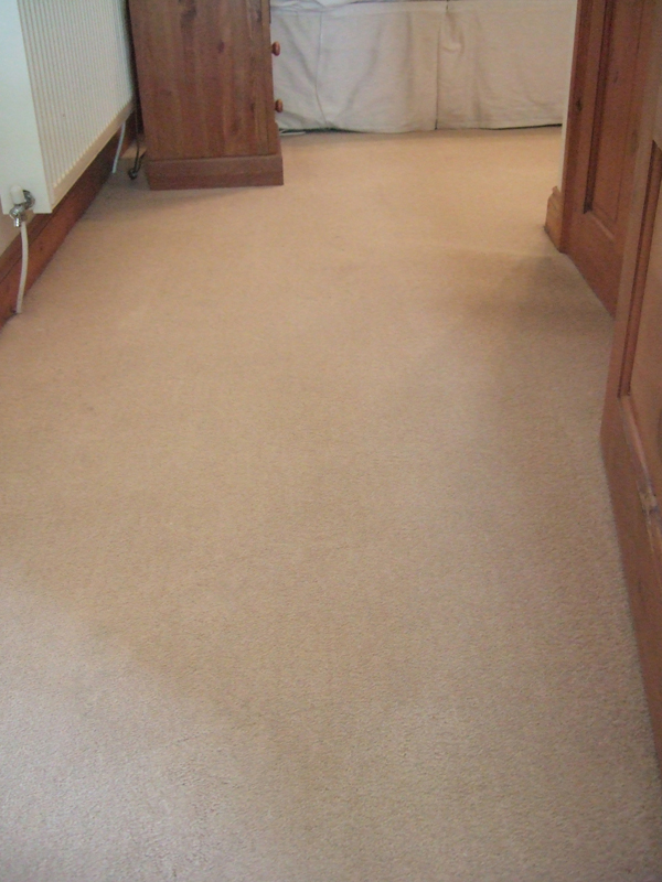 Carpet Cleaning by Martins Cleaning