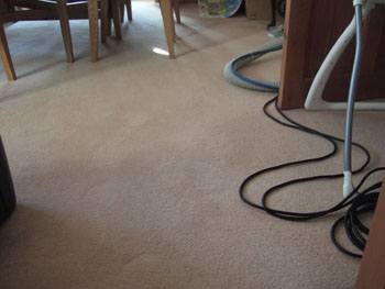 Clean carpet by Martins Cleaning Exter