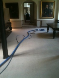 Main reception carpet cleaning
